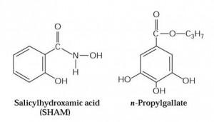 inibidores_oxidase